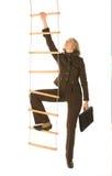 De ladder van de carrière Royalty-vrije Stock Afbeelding
