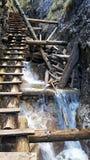De ladder via beek met waterval in de bergen van Slowakije royalty-vrije stock foto's