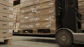 De lader neemt pallets met goederen op stock videobeelden