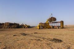De Lading van de suikerriettractor Royalty-vrije Stock Foto's