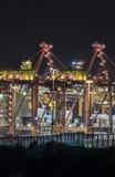 De ladingsterminal van de havenplantkunde bij nacht Stock Afbeelding