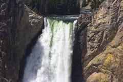 De Lagere Yellowstone Dalingen van de close-up Wyoming stock foto's