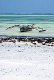 In de lagune ontspan van piragu van de de kustlijnboot van Zanzibar Afrika Stock Afbeeldingen