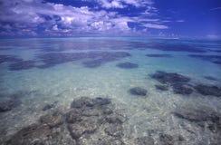 De Lagune van Moorea stock fotografie