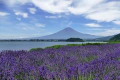 De laguneinpanorama van de Jökulsá rlà ³ n gletsjer met lavendelgebied voor Onderstel Fuji die, de heldere zonneschijn van Ka,  royalty-vrije stock fotografie
