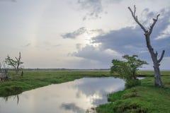 De lagunelandschap van de Arugambaai in Sri Lanka stock foto's