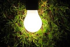 De lamp die van de bol in het gras gloeit Stock Foto's