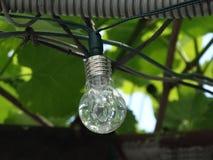 De lamp in de tuin Stock Afbeeldingen