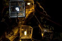 De lamp van de vogelkooi stock afbeelding