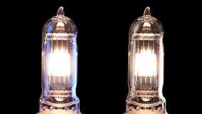 De lamp van het halogeen Het echte gloeilamp trillen stock videobeelden