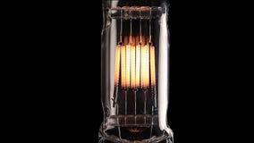 De lamp van het halogeen Het echte gloeilamp trillen stock footage