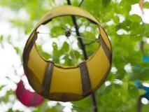 De lampen worden opgezet op de bomen Royalty-vrije Stock Foto's