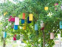 De lampen worden opgezet op de bomen Stock Afbeelding