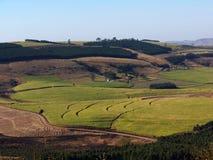 De landbouw Stock Fotografie