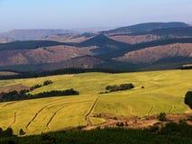 De landbouw Royalty-vrije Stock Foto's