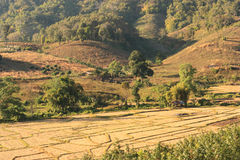 De landbouw in de vallei Royalty-vrije Stock Foto