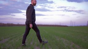 De landbouw, landbouwersmens gaat over groen gebied en kijkt op ontsproten graangewassengewas stock video