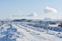 De landbouw onder MT Katla Royalty-vrije Stock Foto's