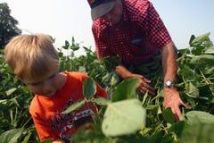 De Landbouw van de familie Royalty-vrije Stock Fotografie