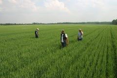 De Landbouw van de familie Stock Foto's