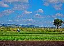 De landbouw van het land Stock Afbeeldingen