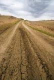 De landbouw van het platteland Royalty-vrije Stock Fotografie