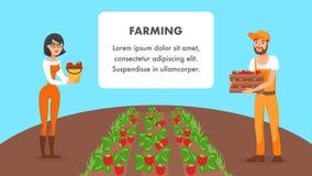 De landbouw van het Vectormalplaatje van de Webbanner met Tekstruimte stock illustratie