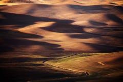 De landbouw van land bij zonsondergang Royalty-vrije Stock Foto