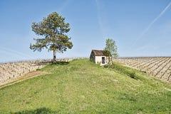 De landbouwbedrijfbouw tussen Twee Wijngaarden stock afbeelding