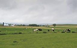 De landbouwbedrijven van Amish royalty-vrije stock afbeelding
