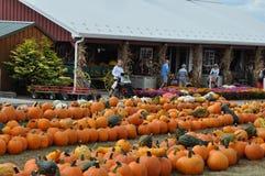 De Landbouwbedrijven van de Robafamilie in de Gemeente van het Noordenabington in Pennsylvania stock afbeelding