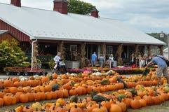 De Landbouwbedrijven van de Robafamilie in de Gemeente van het Noordenabington in Pennsylvania stock foto