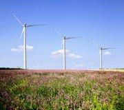 De landbouwbedrijven van de wind. royalty-vrije stock foto