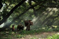 De landbouwer Stock Afbeeldingen