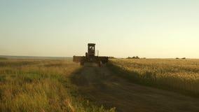 De landbouwer berijdt oud combineert te werken Maaidorser gaat op de manier om tarwe te oogsten oude landstreek Het gebied van de stock footage
