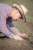 De landbouwer controleert het graan royalty-vrije stock fotografie