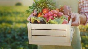 De landbouwer houdt een houten doos met verse groenten Biologische landbouwconcept stock afbeelding