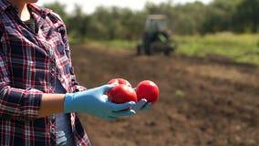 De landbouwer houdt een tomaat op de achtergrond van een werkende tractor in het gebied stock footage