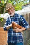 De landbouwer houdt kip in zijn wapens voor kippenhuis stock fotografie