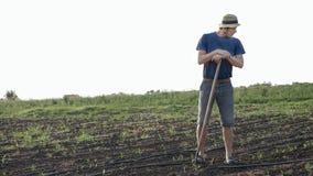 De landbouwer met schoffel rust terwijl onkruid op graangebied bij organisch landbouwbedrijf verwijdert Stock Foto's