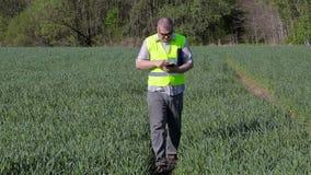 De landbouwer neemt beelden op smartphone en het lopen op het groene graangewassengebied stock footage