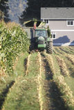 De landbouwer oogst Graan Stock Afbeelding