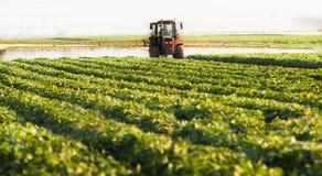 De landbouwer op een tractor met een spuitbus maakt meststof voor jonge groente royalty-vrije stock afbeeldingen