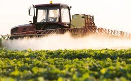 De landbouwer op een tractor met een spuitbus maakt meststof voor jonge groente royalty-vrije stock foto