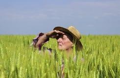 De landbouwer op tarwegebied wordt verborgen beschermt zijn oogst die Royalty-vrije Stock Afbeelding