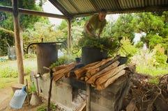 De landbouwer produceert geraniumolie - een geurige die olie in schoonheidsmiddelen en culinaire schotels wordt gebruikt - in Les stock fotografie
