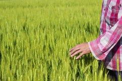De landbouwer is tevreden met zijn landbouwbedrijf Stock Afbeelding
