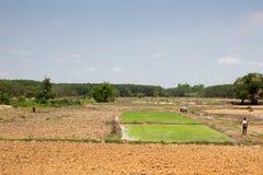 De landbouwer treft voorbereidingen om rijst in platteland te planten Royalty-vrije Stock Foto