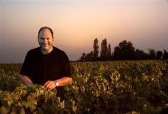 De Landbouwer van de wijn Stock Foto