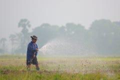De landbouwer van Thailand stock foto's